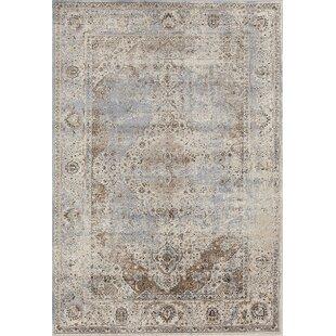 10x14 Woven Oriental Rug Wayfair