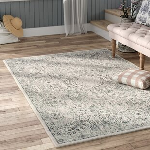 Gray & Silver Rugs You\'ll Love in 2019 | Wayfair