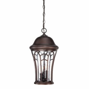Fleur De Lis Living Berube 3-Light Hanging Lantern