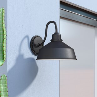 Julia 1-Light Outdoor Sconce by Williston Forge