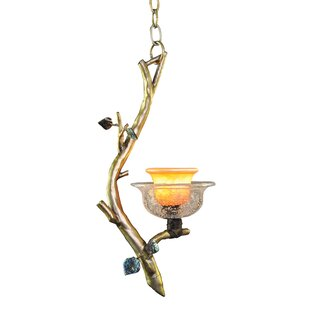 Kalco Cottonwood 1-Light N..