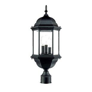Pruitt Outdoor 3-Light Lantern Head by Charlton Home