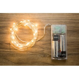 Boston Warehouse Trading Corp Allure 30-Light 10 ft. Fairy String Lights