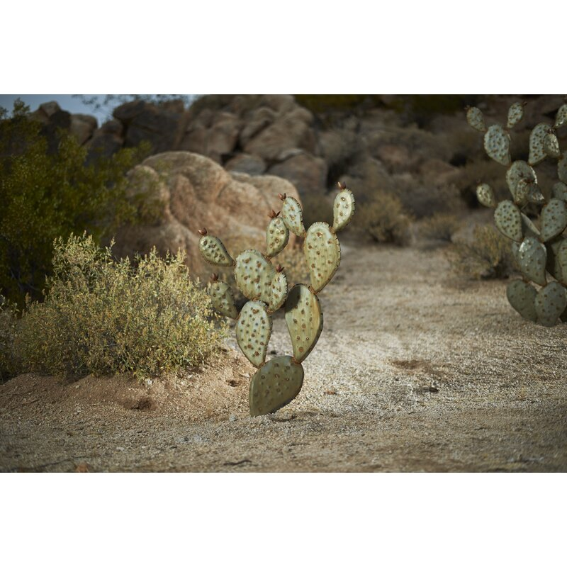Desert Steel Prickly Pear Cactus Garden Art Reviews Wayfair