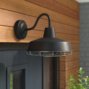 Trent Austin Design Capitol Reef 1-Light Outdoor Barn Light