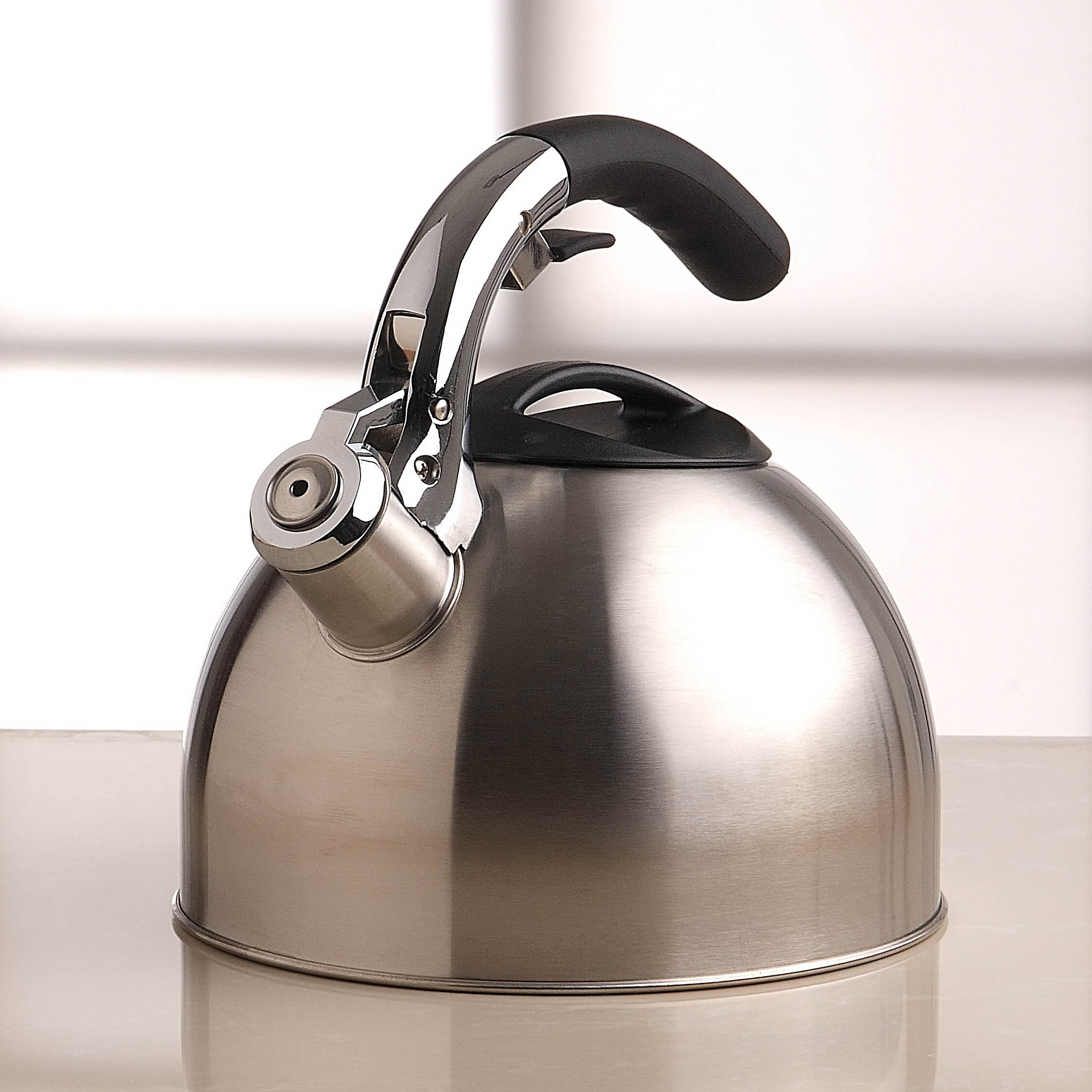 Primula 3 Qt Stainless Steel Stovetop Kettle Reviews Wayfair