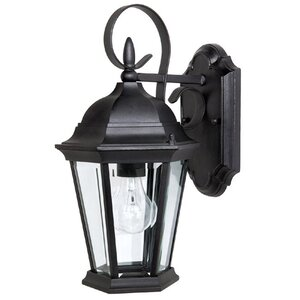 Hounsfield Traditional 1-Light Outdoor Wall Lantern