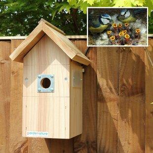 Terron Mounted Bird House By Sol 72 Outdoor