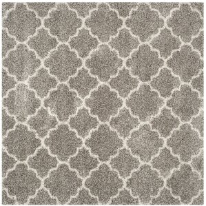 lucina shag gray area rug