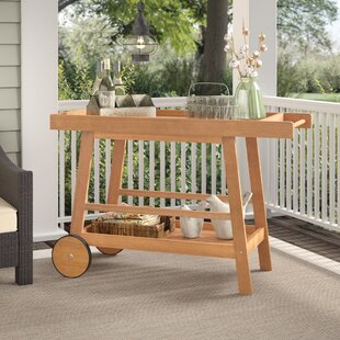 Laurel Foundry Modern Farmhouse Hugo Indoor/Outdoor Bar Serving Cart