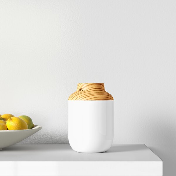 White Orange 10 Ceramic Table Vase Allmodern
