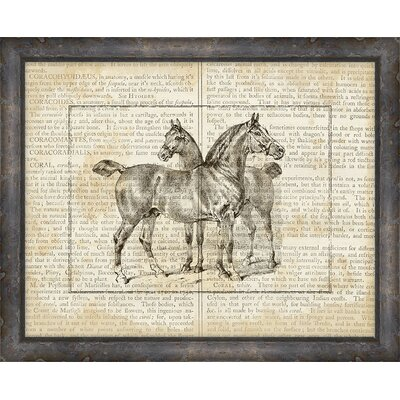 Melissa Van Hise Horse On Writing Framed Graphic Art Print Melissa Van Hise From Wayfair North America Shefinds