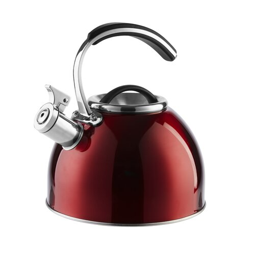 3L Stainless Steel Stovetop Kettle Morphy Richards Colour: