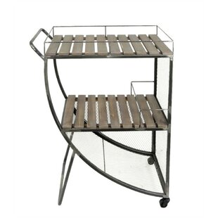 Gracie Oaks Maclennan Splendid Metal and Wood Bar Cart