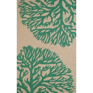 Coral Gables Hand-Woven Green/Beige Indoor/Outdoor Area Rug