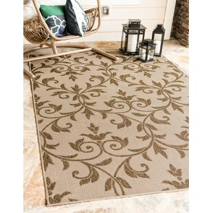 Sarahi Beige/Brown Indoor/Outdoor Area Rug