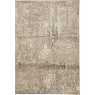 9 X 12 Viscose Area Rugs You Ll Love In 2021 Wayfair