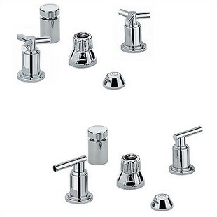 Grohe AtrioVertical Spray Bidet Faucet, Less Handles