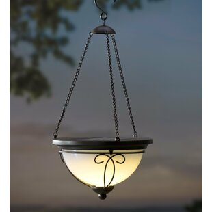 Plow & Hearth Solar 1-Light Outdoor Pendant