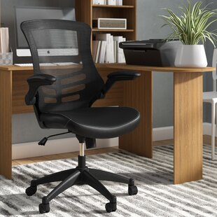 Woolverton Ergonomic Mesh Task Chair by Symple Stuff