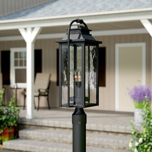 Look for Shekar Traditional 3-Light Lantern Head By Gracie Oaks