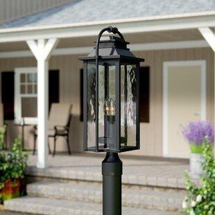 Reviews Shekar Traditional 3-Light Lantern Head By Gracie Oaks