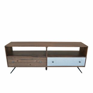 Leadington Media 67 TV Stand by Bungalow Rose