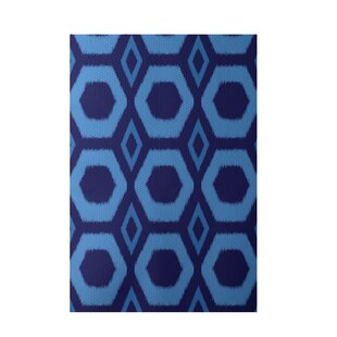 Geometric Hand-Woven Blue Indoor/Outdoor Area Rug