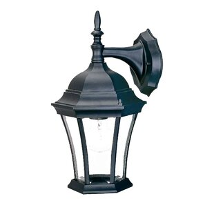 Francesca Lane Outdoor Wall Lantern