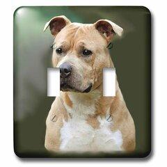 American Staffordshire Terrier Wayfair