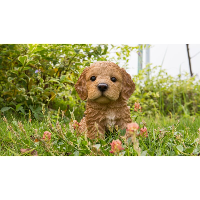 hi line gift ltd sitting cockapoo puppy statue reviews wayfair