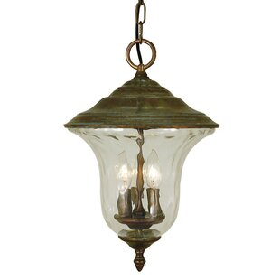 Framburg Hartford 3-Light Outdoor Hanging lantern