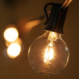 Coupon 15-Light Globe String Lights By Wintergreen Lighting
