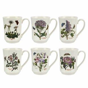 Botanic Garden 6 Piece Coffee Mug Set