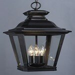Darby Home Co Sunbury 3-Light Outdoor Hanging Lantern