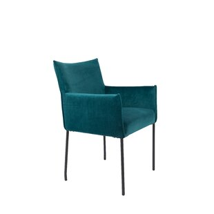 Dion Velvet Armchair Set of 2 by Luxury Furnitures