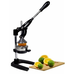Professional Citrus Squeezer Juicer