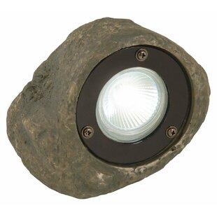 Moonrays 1 Light LED Spot Light