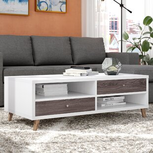 Agatha Coffee Table with Storage