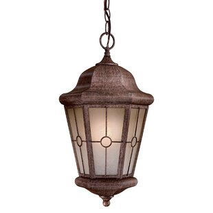 Montellero 1-Light Outdoor Hanging Lantern