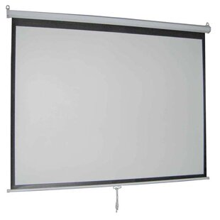 Vivo Matte White Manual Projection Screen
