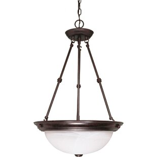 Breakwater Bay Clarewood 3-Light Bowl Pendant