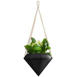 Outdoor Hanging Planter Hanging planters youll love wayfair save to idea board workwithnaturefo