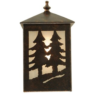 Low priced 1-Light Outdoor Sconce By Meyda Tiffany