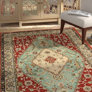Hedberg Medallion Rust/Blue Indoor/Outdoor Area Rug