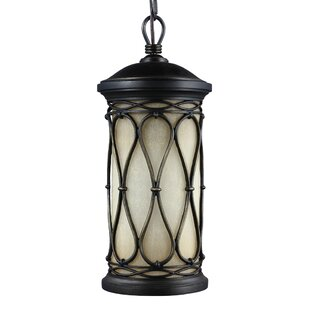 Darby Home Co Parkes 1-Light Outdoor Hanging Lantern