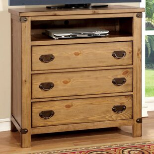 Gracie Oaks Pacifica Burnished TV Stand