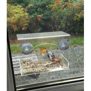 Eve Window Suet Bird Feeder By Archie & Oscar