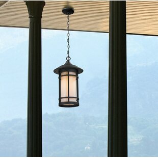 Affordable McKew 1-Light Outdoor Hanging Lantern By Bloomsbury Market