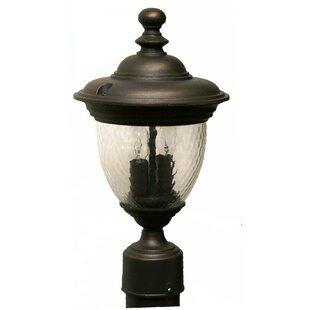 Find Phillipstown 2 Light 15.25 Post Lantern By Alcott Hill
